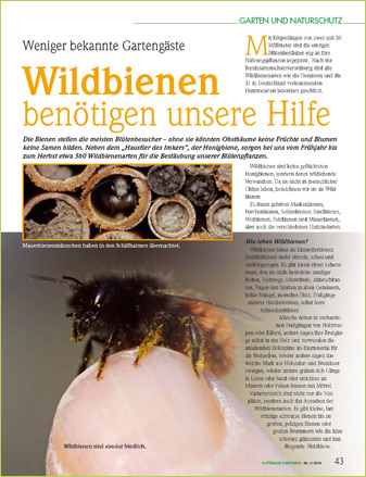 wildbienen projekt wildbienenschutz alles rund um den schutz von wildbienen hummeln. Black Bedroom Furniture Sets. Home Design Ideas